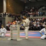 26. Otwarte Mistrzostwa Europy Karate Kyokushinkai Tezuka Group, 26-27.11.2016